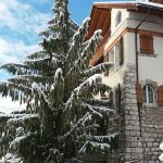 Real Estate Gstaad Region Switzerland Luxurous apartment for sale